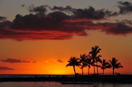 sunset on the beach hawaii