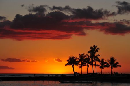 sunset on the beach hawaii  photo