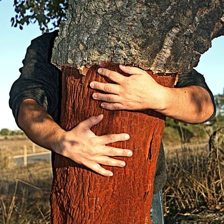 man holding a cork tree with sunset light