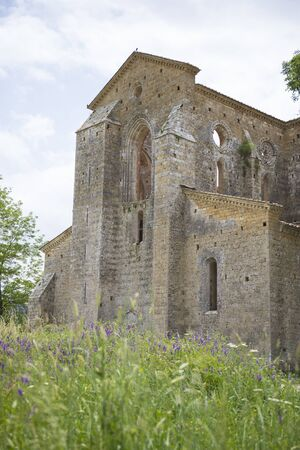 The side of san galgano abbey from the outside with flowers in the foreground. Vertical shot, Tuscany, Italy. Stok Fotoğraf