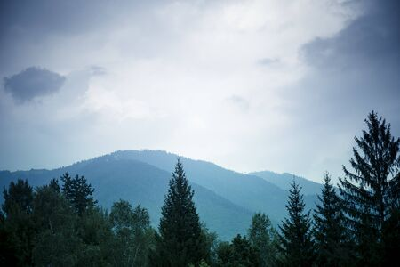 Mountains background with tree tops in the foreground under a moody sky. Blue filter. Banco de Imagens