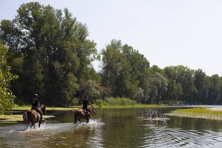 two people wading Ticino river on horseback at Bernate Ticino, lombardia, Italy.