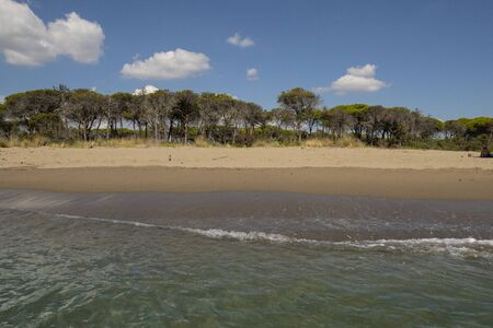 The beach of Marina di Alberese, one of the wildest beaches of the Tuscan seaside, located in the Uccellina Park, Italy. The photo is taken from the blue clear water. 写真素材