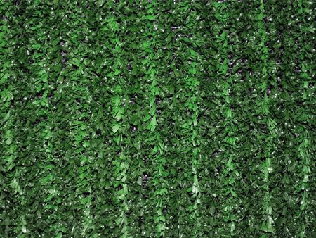 Green artifical grass hedgerow fence useful as a background photo