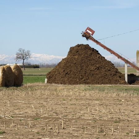 Heap of manure and straw bales in a field