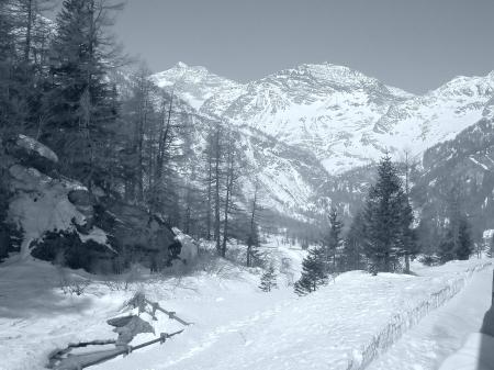 View of Piz Bernina Alps mountains in Switzerland photo