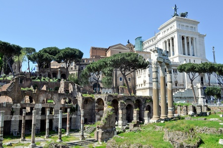 Ruins of the Roman Forum (Foro Romano) in Rome, Italy photo