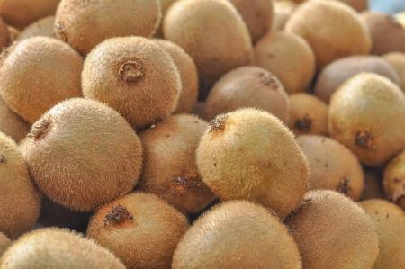 kiwi fruta: Kiwi aka verde kiwi frutos comestibles de baya