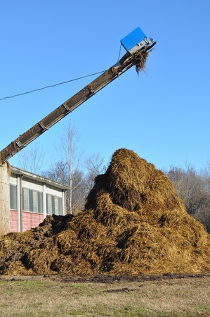 Heap of manure in a field