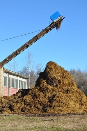 manure: Heap of manure in a field