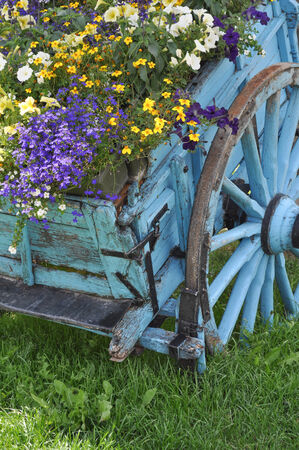 pictoresque: Ancient wooden chariot converted to pictoresque flowerpot