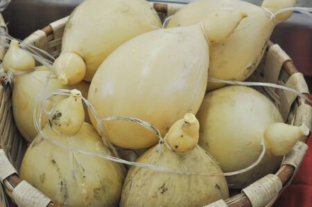 scamorza cheese: Traditional handmade cheese fine food from Europe