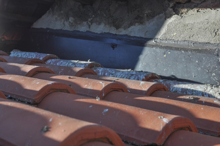 caused: Damage caused by pigeons on a roof
