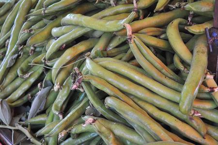 snap bean: Green string snap beans vegetables vegetarian food