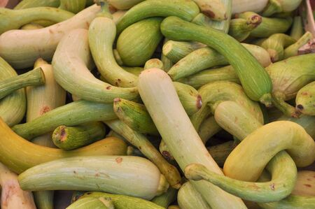 courgettes: Zucchini (Cucurbita pepo) aka courgettes vegetables vegetarian food Stock Photo