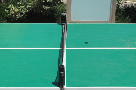 table: Table tennis game table