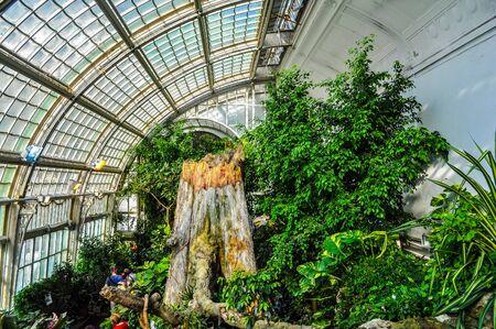 schoenbrunn: WIEN, AUSTRIA - CIRCA FEBRUARY 2016: High_dynamic_range (HDR) The Palmenhaus Schoenbrunn is a large greenhouse Editorial