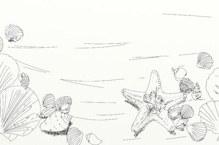 disegni di tracce di conchiglie e elementi marini Archivio Fotografico