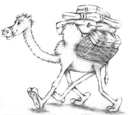 Camel with suitcases Stockfoto