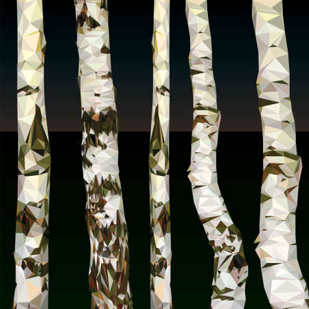 birch polygon design