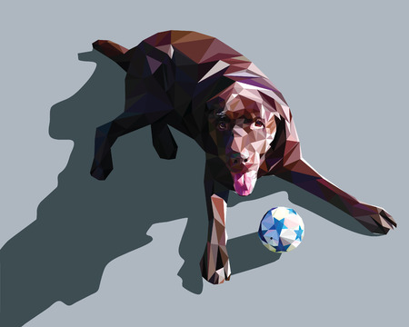 perro labrador: Perro baja poli diseño labrador ilustración
