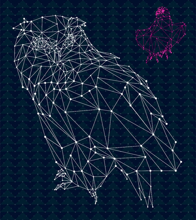origami: Owl and eagle low poly design, hipster abstract geometric in space. Constellation in sky pattern.