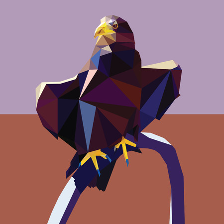 triangular eyes: Eagle vector polygon geometric illustration