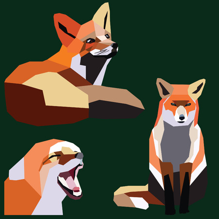 fox set low poly design colorful vector illustration isolated on green background.