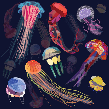 Jellyfish set geometric colorful low poly design. vector illustration of 8 different types of jellyfish. Astralian spotted, papuan.