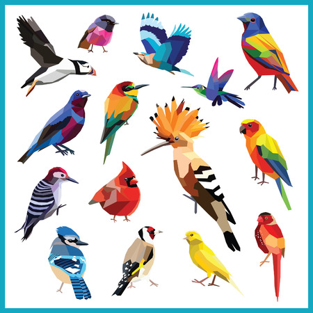 Vogels-set van 15 kleurrijke vogels laag poly ontwerp geïsoleerd op wit background.Bee eter, kanarie, blauwe vlaamse gaai, kardinaal, cotinga, vink, hop, kolibrie, indische roller, gors, papegaaiduiker, robin, hout verpakker, parkiet