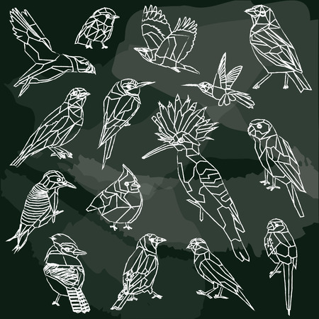 Birds-set of 15 birds low poly chalkboard design isolated.Bee eater,canary,blue jay,cardinal,cotinga,finch,hoopoe,hummingbird, indian roller,bunting,puffin,robin,wood packer,parakeet Illustration
