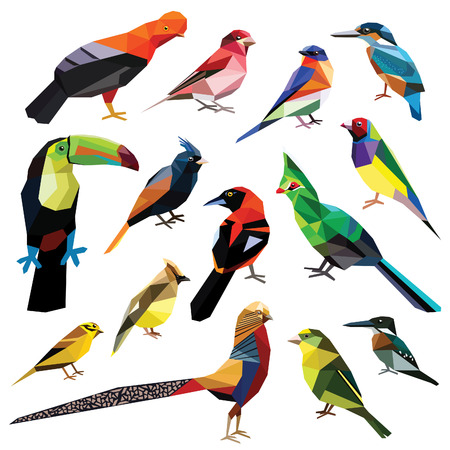 Birds-set colorful birds low poly design isolated on white background