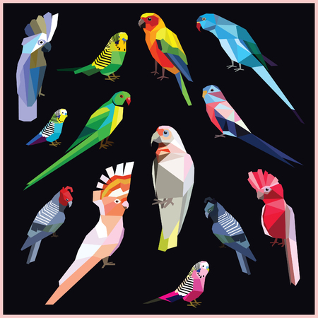 Birds-set of colorful low poly parrot birds isolated on black background.