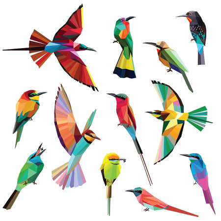 Birds-set of colorful meropidae birds low poly design isolated on white background. Vettoriali