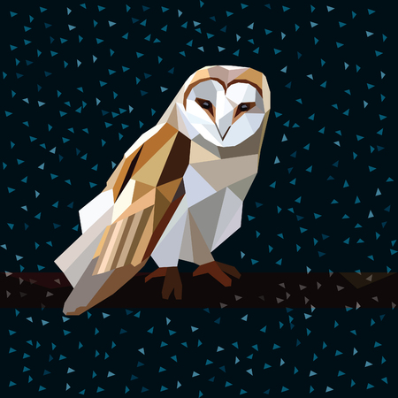 Owl triangle low poly style.