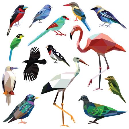 poligonos: Aves-set pájaros de colores diseño de bajo poli aislada en el fondo blanco. Crow,Broadbill,Bunting,Starling,Flamingo,Tanager,Magpie,Barbet,Pigeon,Booby,Grosbeak,Kingfisher,Stork,Cardinalidae