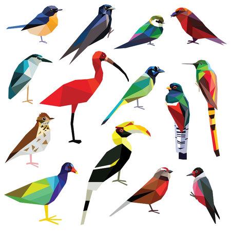 鳥セット カラフルな鳥の低ポリ デザイン白い背景に分離されました。ヘロン Linet、サイチョウ、ジェイ、キツツキ、サンコウチョウ、キヌバネドリ  イラスト・ベクター素材