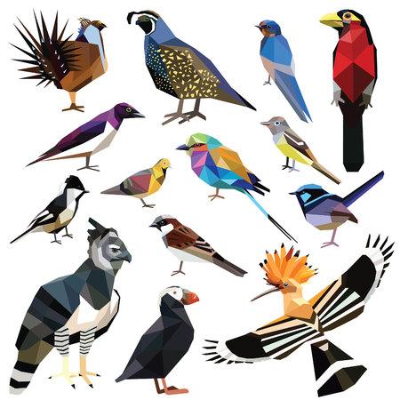 to polygons: Aves-set pájaros de colores diseño de bajo poli aislada en el fondo blanco. Tragar, Barbet, papamoscas, Arpía, Abubilla, Gorrión, Roller, Codorniz, Wren, Sage Grouse, frailecillo, Starling, Paja, Paloma. Vectores
