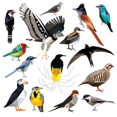 Birds-set colorful birds low poly design isolated on white background. Flycatcher,Swift,Broadbill,Roller,Harpy eagle,Puffin,Barbet,Partridge,Phalarope,Tit,Dove,Swallow,Bird of paradise,Meadowlark,Jay Illustration