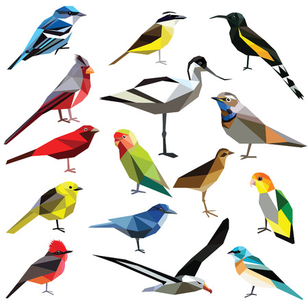 origami bird: Birds-set colorful birds low poly design isolated on white background. Albatross,Bluethroat,Warbler,Cardinal,Kiskadee,Tanager,Bunting,Oahu,Avocet,Jay,Lovebird,Flycatcher,Caique,Rail,Mohua