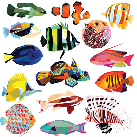 discus fish: fish-set colorful fish low poly design isolated on white background.Clownfish,Angelfish,Forcipiger,Coralfish,Blowfish,Lionfish,Butterflyfish,Anthias,Tilapia,Mandarinfish,Parrotfish,Triggerfish,Tang