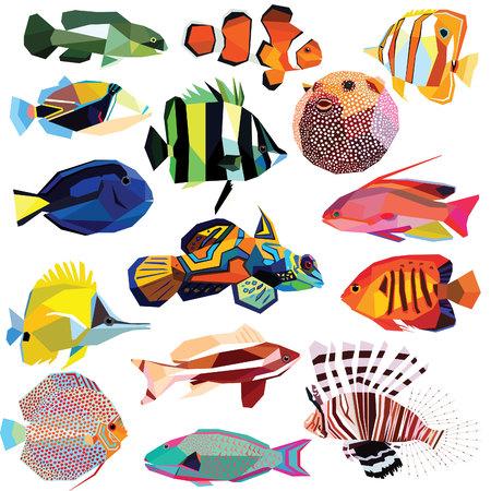 pez globo: peces de colores diseño de bajo poli peces-set aislado en blanco background.Clownfish,Angelfish,Forcipiger,Coralfish,Blowfish,Lionfish,Butterflyfish,Anthias,Tilapia,Mandarinfish,Parrotfish,Triggerfish,Tang