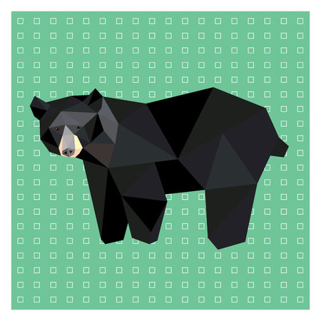 American black bear low poly design isolated on green and white background. Animal card design.
