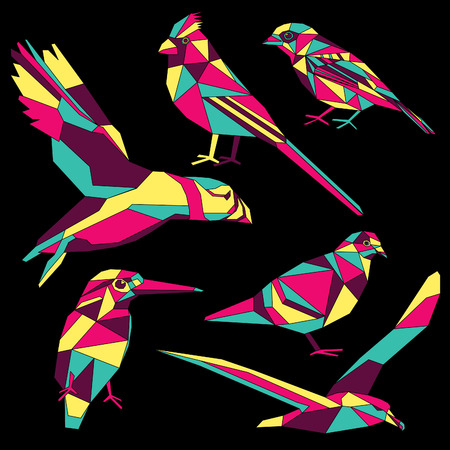 Birds-set colorful birds low poly design isolated on black background Illustration