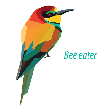 colorful Bee eater bird low poly design isolated on white background