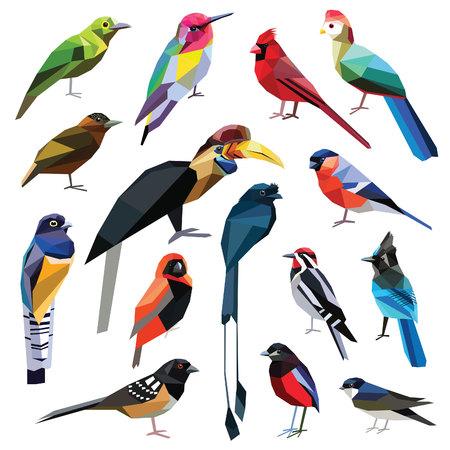 Vogels-set kleurrijke vogels laag poly ontwerp geïsoleerd op een witte achtergrond. Hummingbird,Pitta,Finch,Leafbird,Drongo,Martin,Hornbill,Cardinal,Turaco,Sapsucker,Piculet,Towhee,Jay,Weaver,Trogon. Vector Illustratie