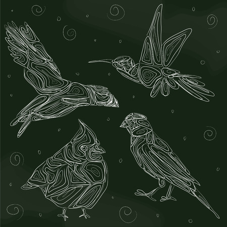 Birds-set of birds hand drawn chalkboard design isolated on dark background. Puffin, Hummingbird, Canary, Cardinal Illustration