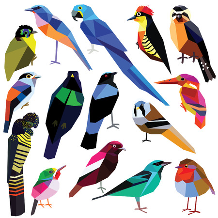 Birds-set colorful birds low poly design isolated on white background Bluebird,Reedling,Honeycreeper,Falconet,Tody,Macaw,Jay,Cotinga,Cockatoo,Robin,Kingfisher,Asity,Broadbill,Paradise bird,Woodpecker