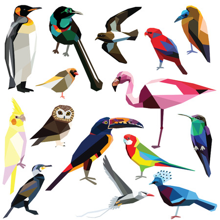 Birds-set colorful birds low poly design isolated on white background. Petrel,Pigeon,Capuchinbird,Aracari,Rosella,Cormorant,Flamingo,Penguin,Cockatiel,Owl,Lory,Quelea,Tropicbird,Astrapia,Woodnymph. Illustration