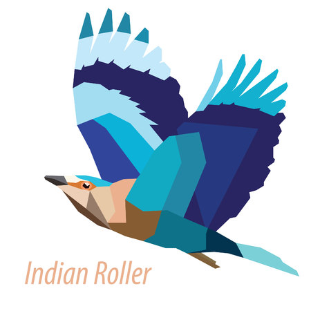 ornithological: colorful Indian Roller bird low poly design isolated on white background Illustration